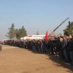 kobane liberada frontera 1