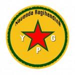 logo NR-YPG-1